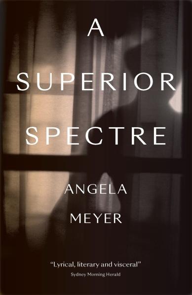 A_Superior_Spectre_cover.jpg