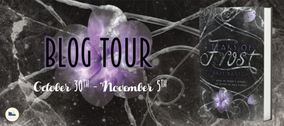 TOUR BANNER.png